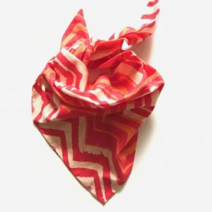 dog scarf online India