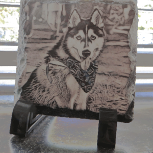 Husky photos and art in India