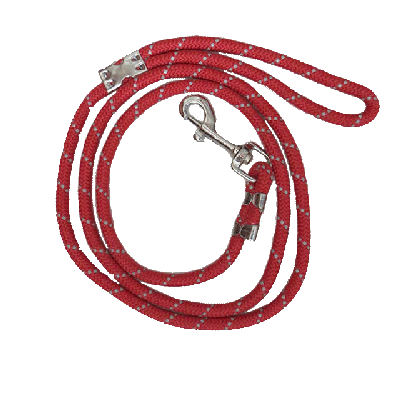 Red dog leash for medium breeds