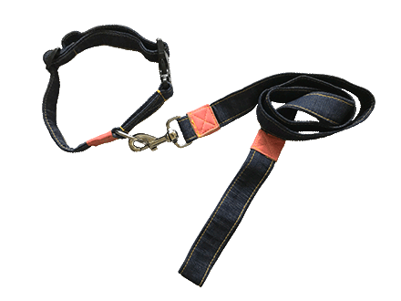Blue dog collar and leash set