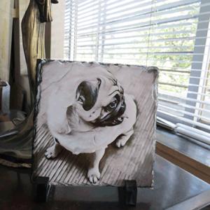 pug dog art online