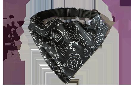 Black and white dog collar