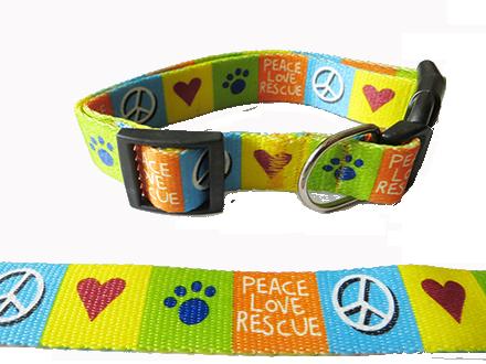 Rescue Dog online in Mumbai