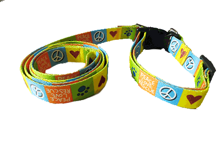 Collars and leashes for streetie dogs