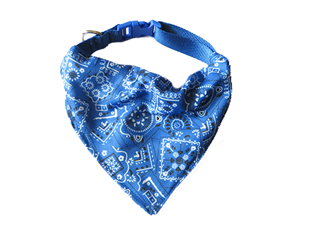 dog scarf online in India