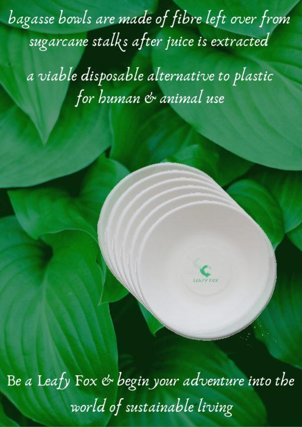 environment friendly bowls