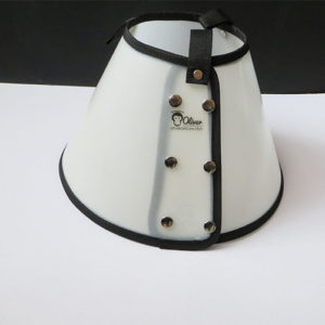 dog collar cone detail