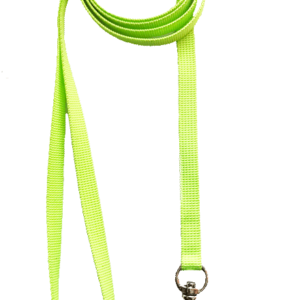 cat leash online Mumbai