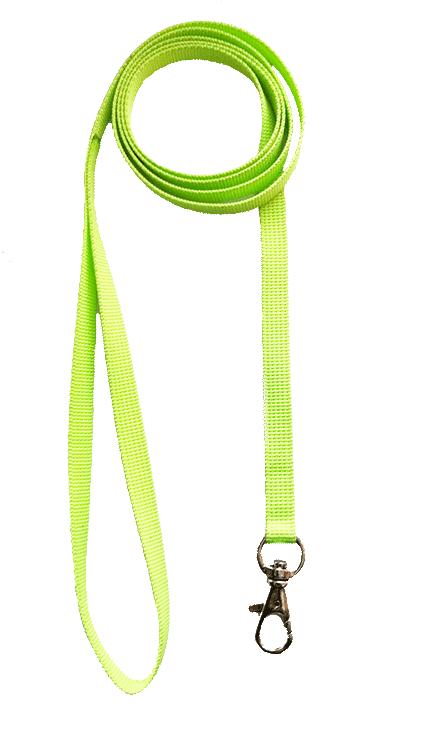 cat leash online Mumbai
