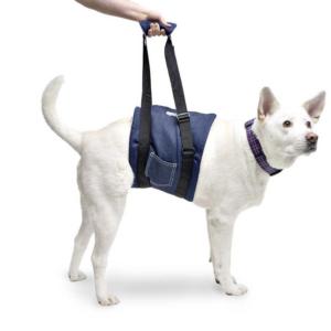 dog support sling