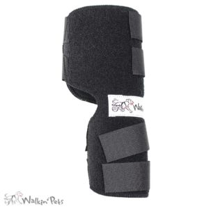 neoprene hock wrap for dogs