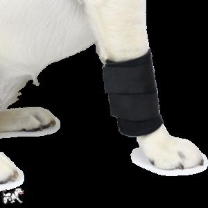 neoprene dog wrist wrap