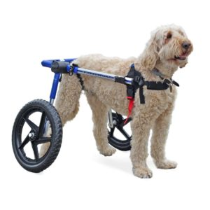 Med/Large Dog Wheelchair