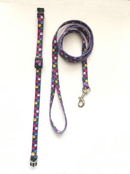 paw print puppy collar