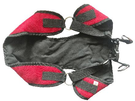 dog harness measure