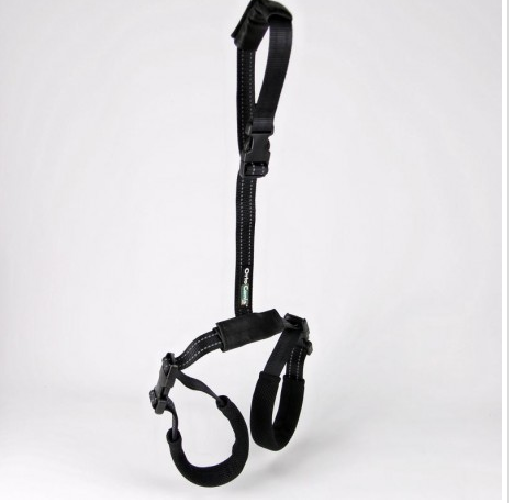 hind limb harness for dogs