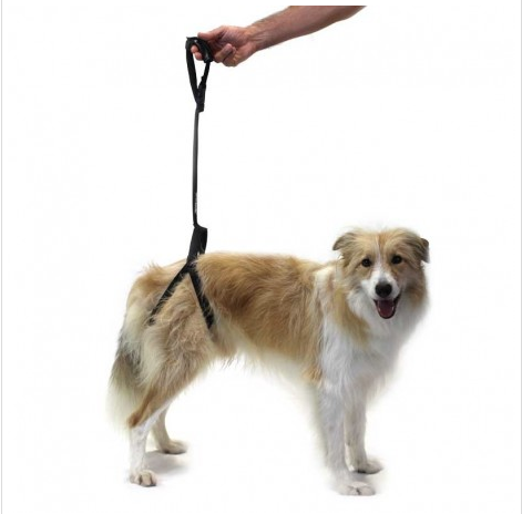 Rear Support Harness for Dogs