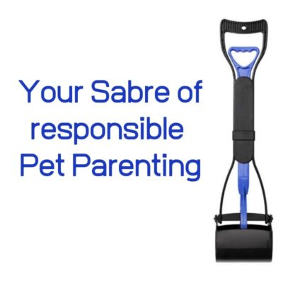 responsible pet parents
