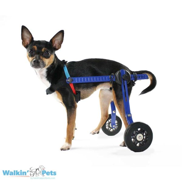 Mini wheelchair for cats