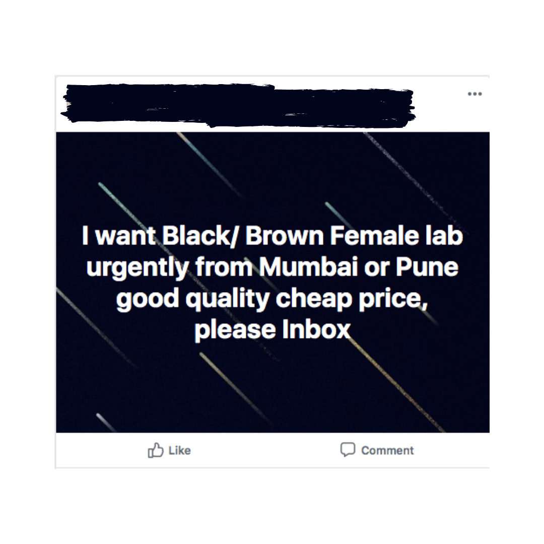 Facebook posts in groups