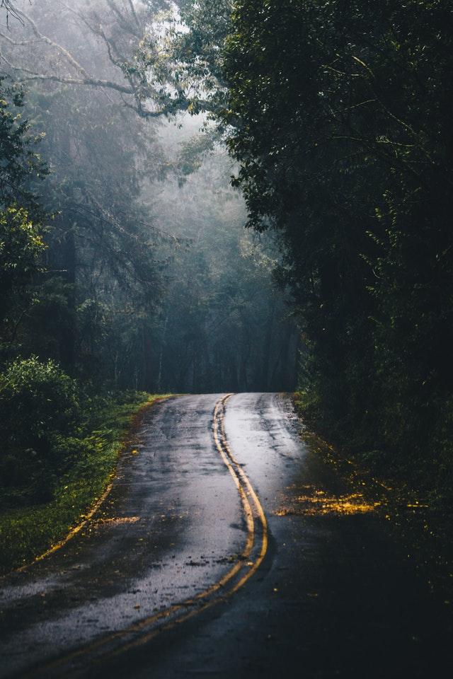 forest encroachment