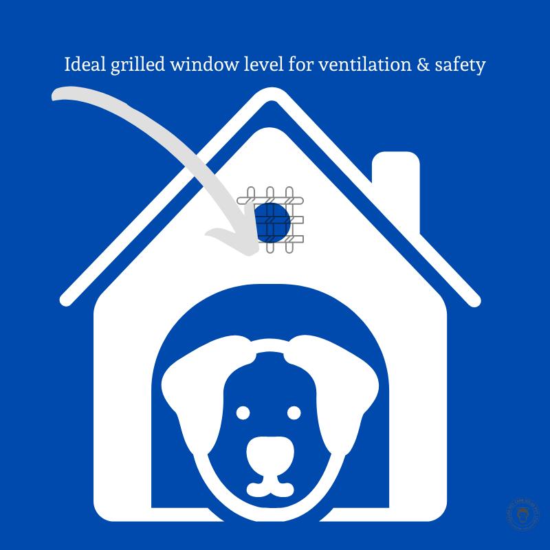 Dog Kennel windows