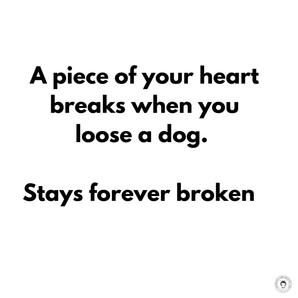 quotes on dogs