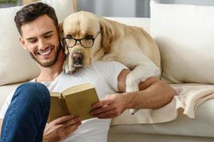 pet psychology online