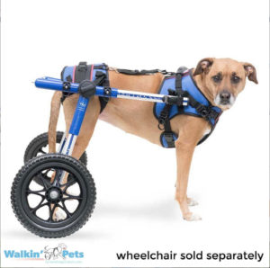 front harness for wheelchair
