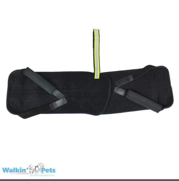 pelvic bone support for dogs