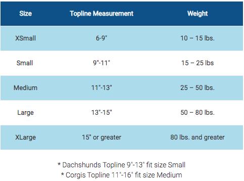 spinal brace measures